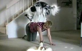 Dog Workout Buddy