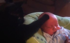 Cat Stops Baby Crying