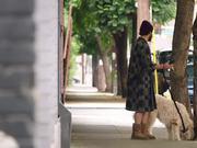 Dog Days Trailer 2