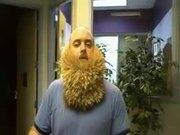 2747 Toothpick Beard