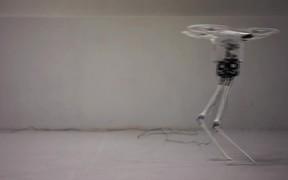 Aerial Biped Robot Dances