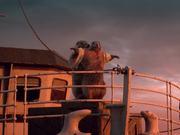 Marmottes - Titanic