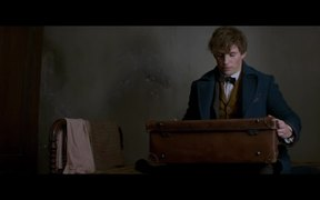 Fantastic Beasts and Where to Find Them Trailer