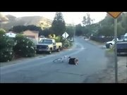 Wheelie Kid Fails