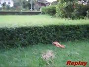 Funny Dog Jump