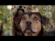 A Dog's Way Home Trailer
