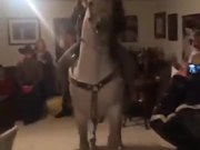 Horse House Party