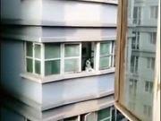 Neighbours Husky