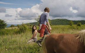 Maine Trailer