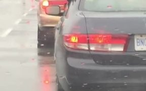 Dog Eating Raindrops Out Of A Car