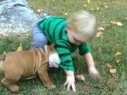 Kids Vs Dogs