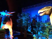 Dinasour Exhibiton At National Museum