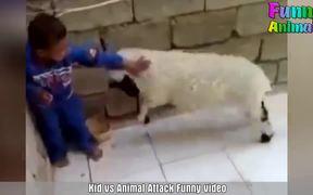 Cute Animals Attack Kids