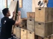 Dog Takes The Leap Of Faith