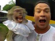 Monkey Loves To Scream On Camera