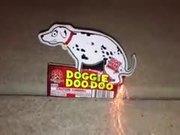 A Hilarious Pooping Dog Firecracker
