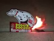 A Hilarious Pooping Dog Firecracker