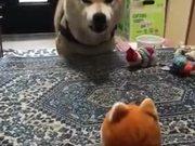 Puppy Conversation