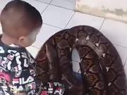 Snake Charmer In The Making
