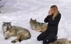 Don't Watch This When Your Dog Is Around!
