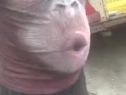 A Human Monkey In A Realistic Way