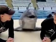 The Kissing Marathon With A Dolphin