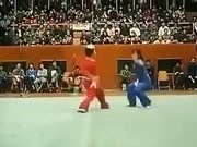 The Most Beautiful Karate Fight Ever