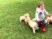 Getting Chased By A Little Ball Of Floofs