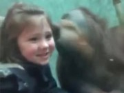 Things That Happen At The Zoo