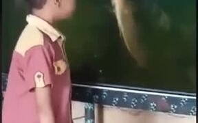 Heated Argument Between A Kid And A Fish