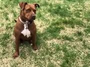 When Your Reaction Times Are Very Slow