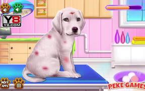 Labrador Puppy Day Care Walkthrough