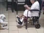 Grandma And Her Dog Dropping Them Beats