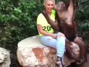 This Orangutan Knows How To Get Ladies