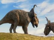 AniMat's Reviews: Walking With Dinosaurs