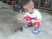 Tiny Kid Feeding The Tiny Birds