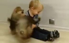 Baby Fluffballs Playing With A Baby