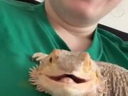 This Smiling Lizard Will Make Your Day