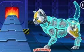 Cyber Cat Assembly Walkthrough