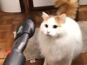 "Cat: ""I Don't Like This Vacuum Cleaner At All."""