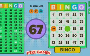 Bingo Solo Walkthrough