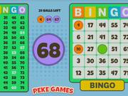 Bingo Solo Walkthrough