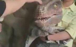 Does Anyone Want A Dinosaur Pet?