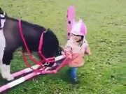 A Tiny Kid Needs A Tiny Pony Friend