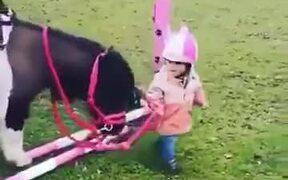 A Tiny Kid Needs A Tiny Pony Friend