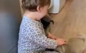 Cute Baby With Cute Puppies