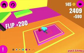 Backflip Dive 3D Walkthrough