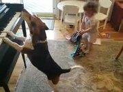 Baby And Doggo's New Band
