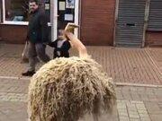 Behold The Ostrich Man