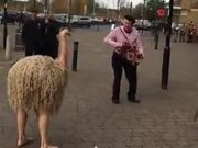 Behold The Ostrich Man